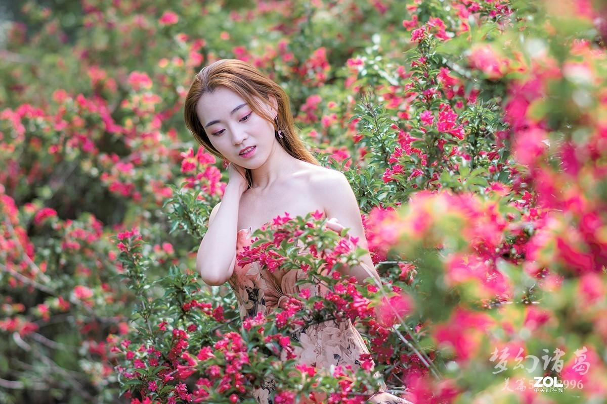 【梦幻美拍】夏之恋*蔷薇花女孩儿