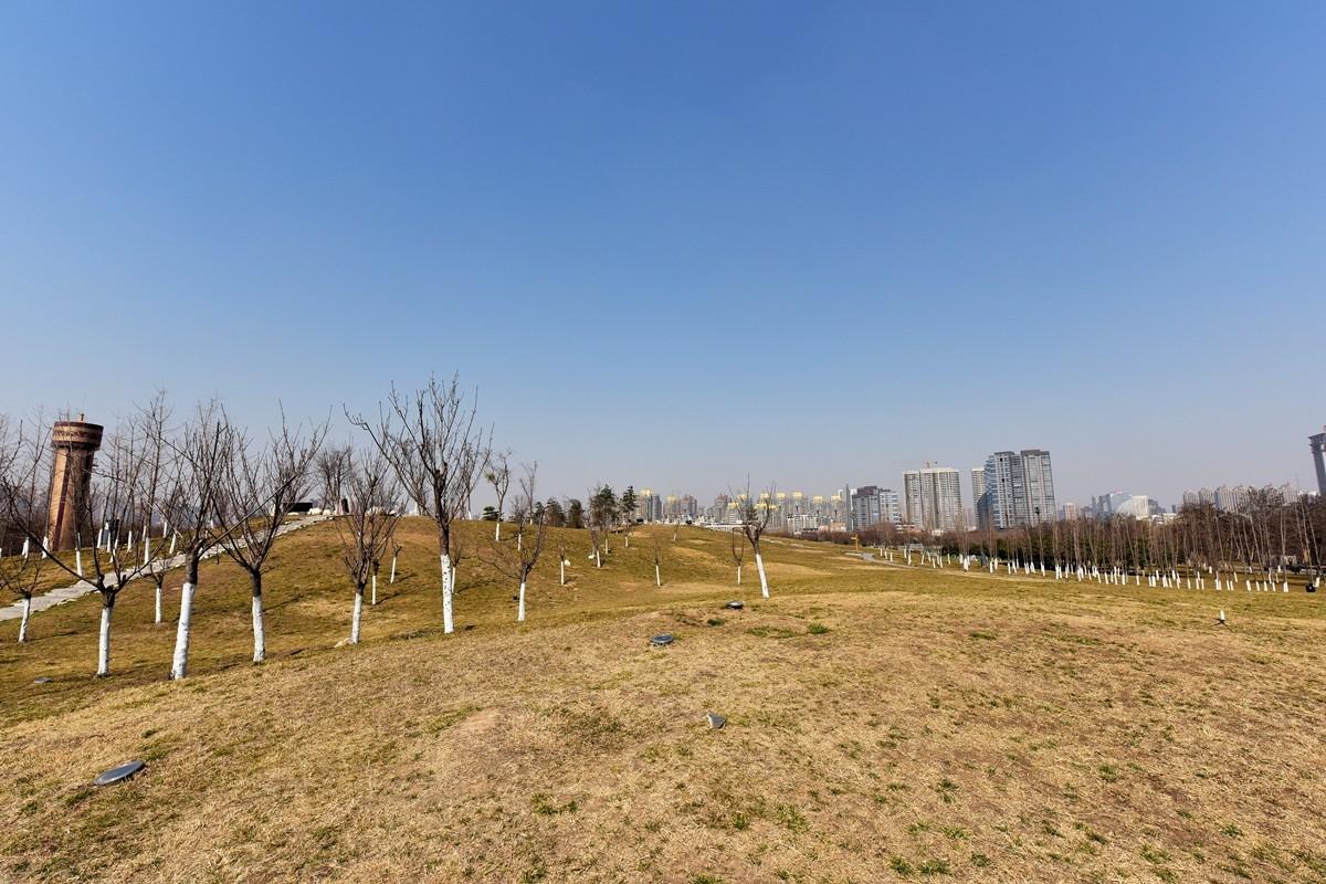大明宫遗址公园