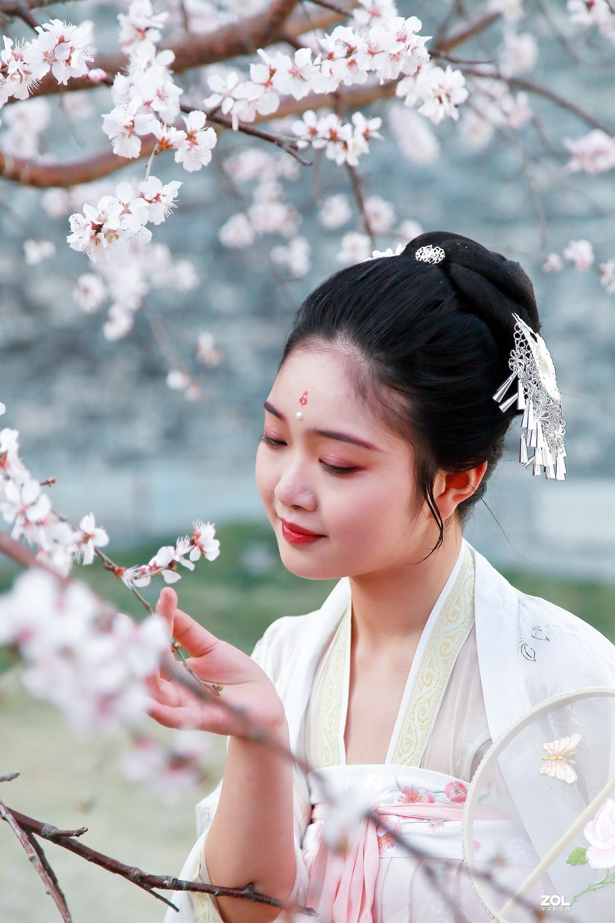 #回顾2019# 春到桃花源