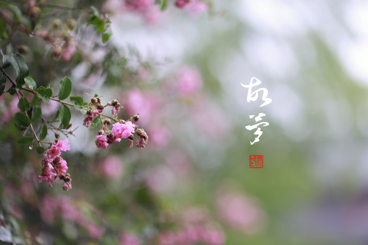【长川映像】——故梦