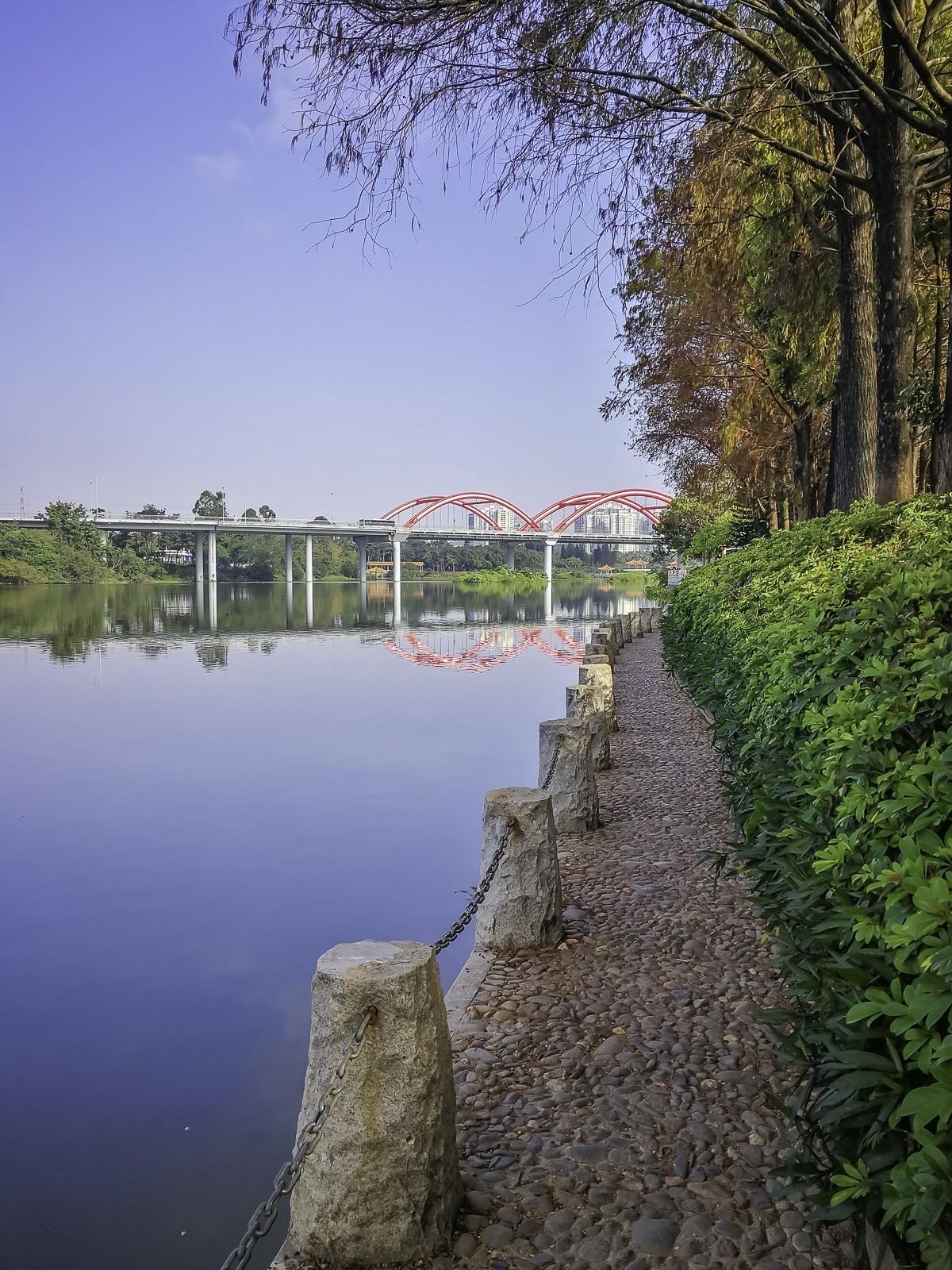 深圳洪湖公园 ~ 掠影