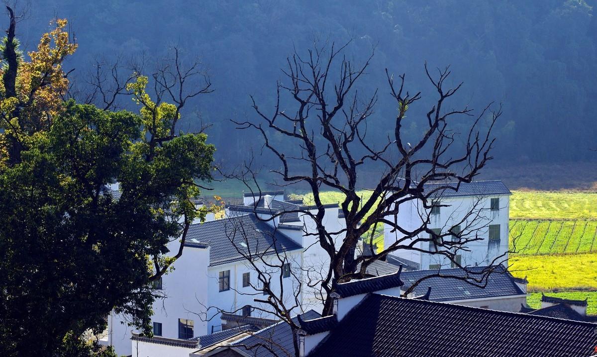 初冬……大山里的对冲村(一)