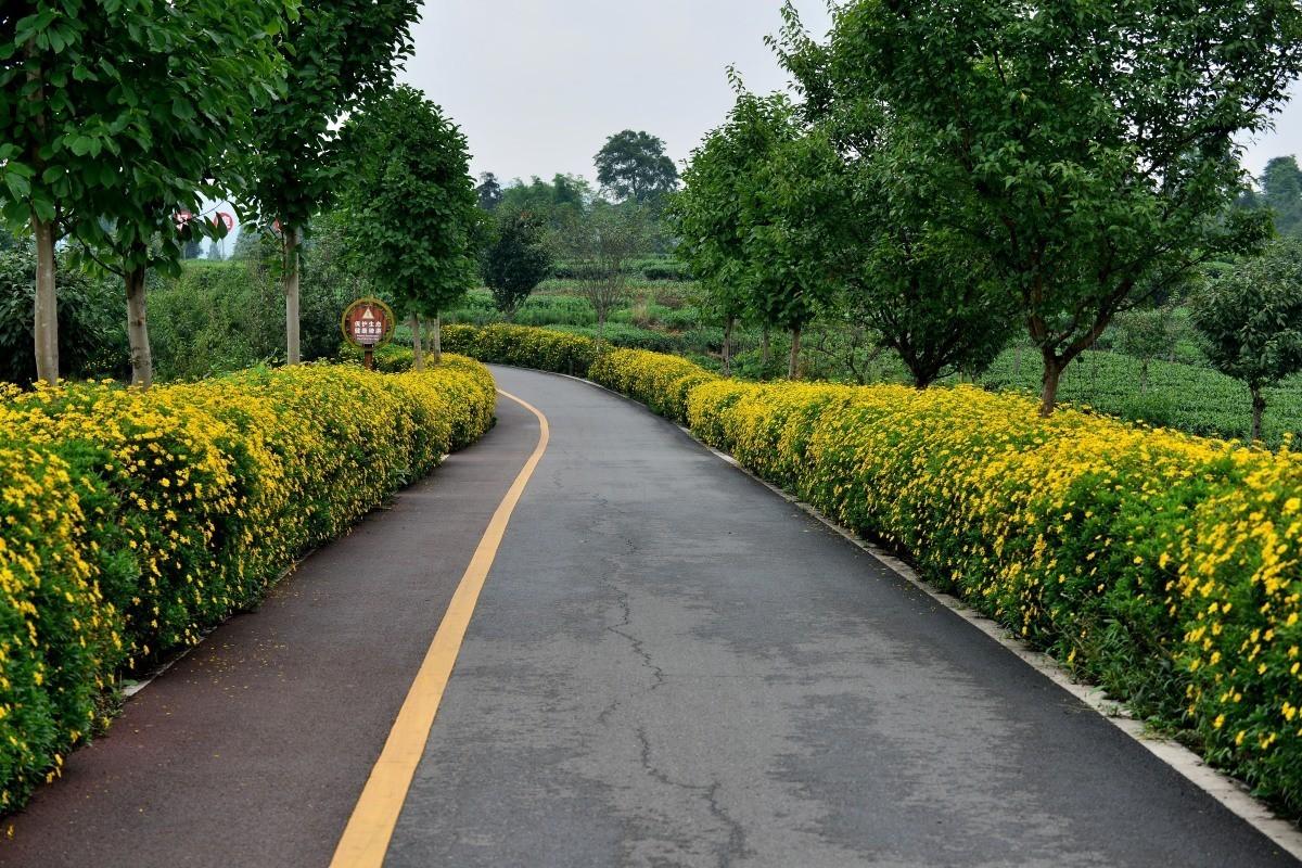 雅安名山.红草坪景区(2)