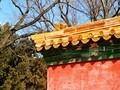 春节后的颐和园