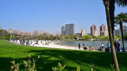 上海郁金香公园