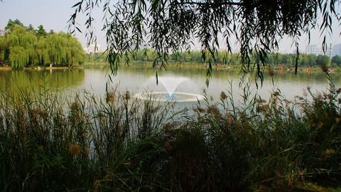 大明宫国家遗址公园的秋景