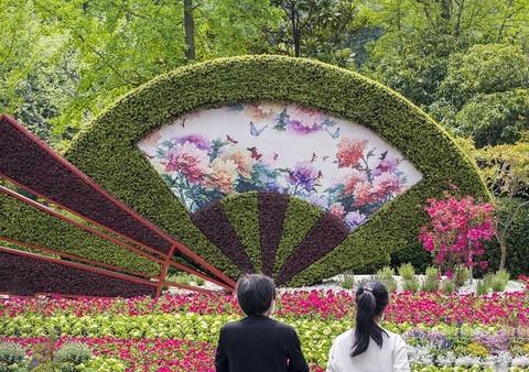 春暖花开 彩蝶飞舞
