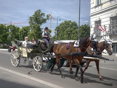 布拉格的交通工具