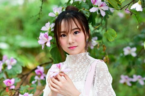 紫荆花开~初入85.14g