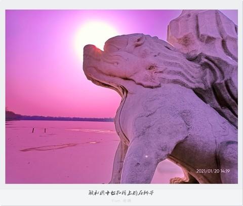 颐和园十七孔桥上的石狮子(手机版)
