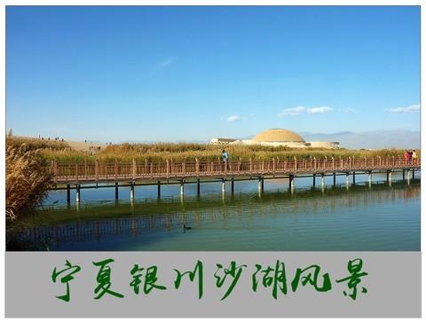旅游随拍-----西北之旅*宁夏银川沙湖风景(下)