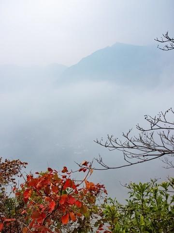 三峡红叶似彩霞