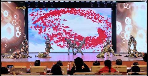 舞蹈:迷彩之花