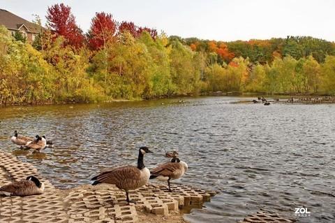 湖边游随拍