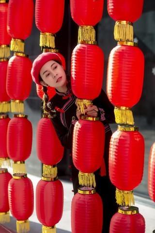 大红灯笼迎新春