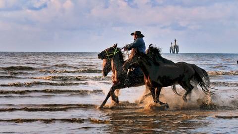 海滩、晨曦、军马