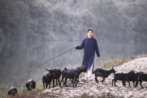 【如影人像】牧羊姑娘