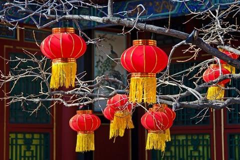 节日的红灯笼