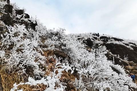 21071---寒潮下广东的冰雪(完)